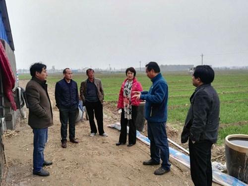 图为长垣县残联理事长杨凤敏到安生养殖合作社察看肉羊养殖情况