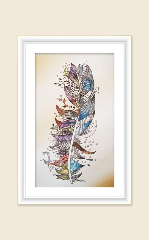 图为多彩的羽毛