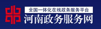 河南省政务服务网